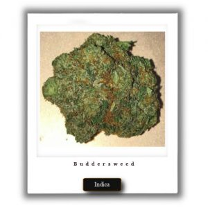 Buy Online Discreet and Safe-Death Star Indica Marijuana Strain