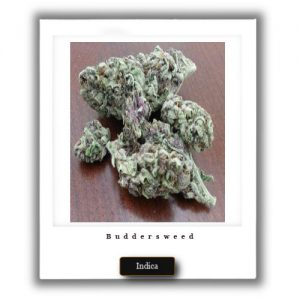 Buy Online Discreet and Safe-Granddaddy Purple Indica Marijuana Strain