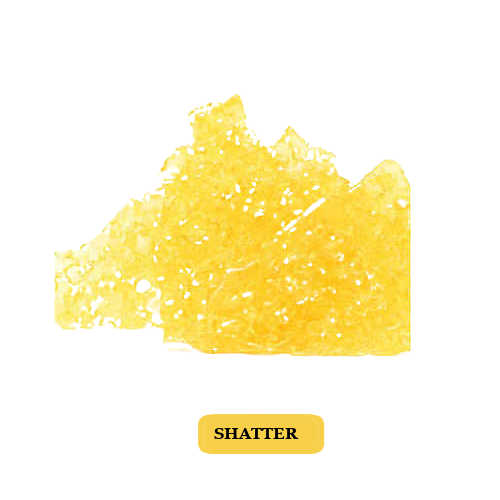 Lemon Haze Shatter for sale
