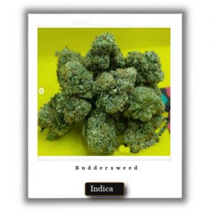 Best Weed Deals-Grape Ape Indica Marijuana Strain