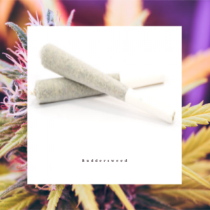 Mail order Indica Preroll Joint