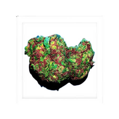 Cinderella 99-weed for sale