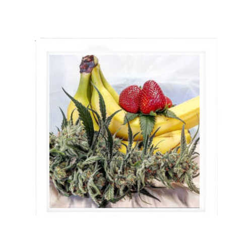 Strawberry Banana-weed for sale