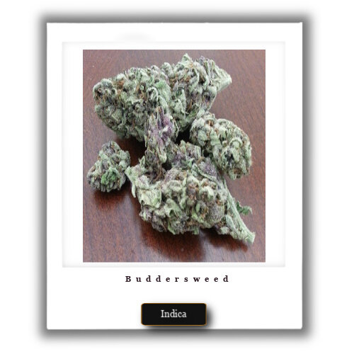 buy Granddaddy Purple weed