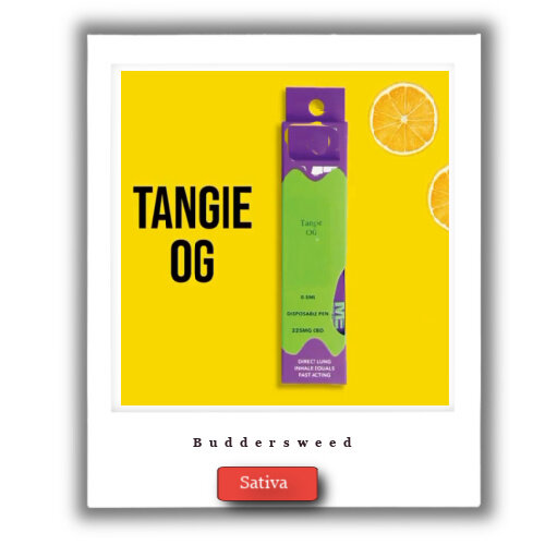 1g Tangie OG THC Cartridge
