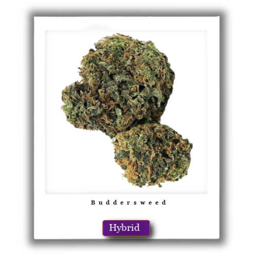 Sour Bubba weed for sale
