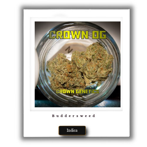 Crown OG weed for sale