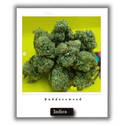 Mail order Grape Ape Indica Marijuana Strain