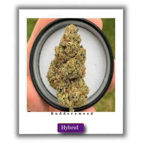 weed for sale